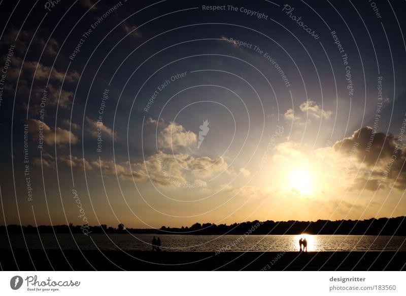 Abschied Mensch Wasser schön Sonne Sommer Strand ruhig Liebe Dämmerung Freiheit Glück Traurigkeit Paar See Sand