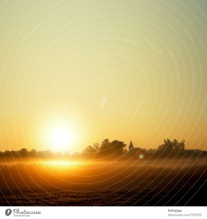 16567 schönfließ Sonnenaufgang Natur Himmel Baum Sonne Pflanze Ferien & Urlaub & Reisen Gegenlicht Tier Sonnenuntergang Herbst Dämmerung Landschaft Zufriedenheit Stimmung Feld