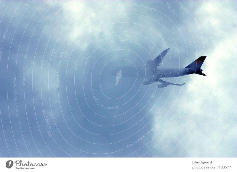 Flight Of Icarus Farbfoto Außenaufnahme Menschenleer Tag Pilot Luftverkehr Himmel Wolken Gewitterwolken Wetter Unwetter Wind Personenverkehr Flugzeug
