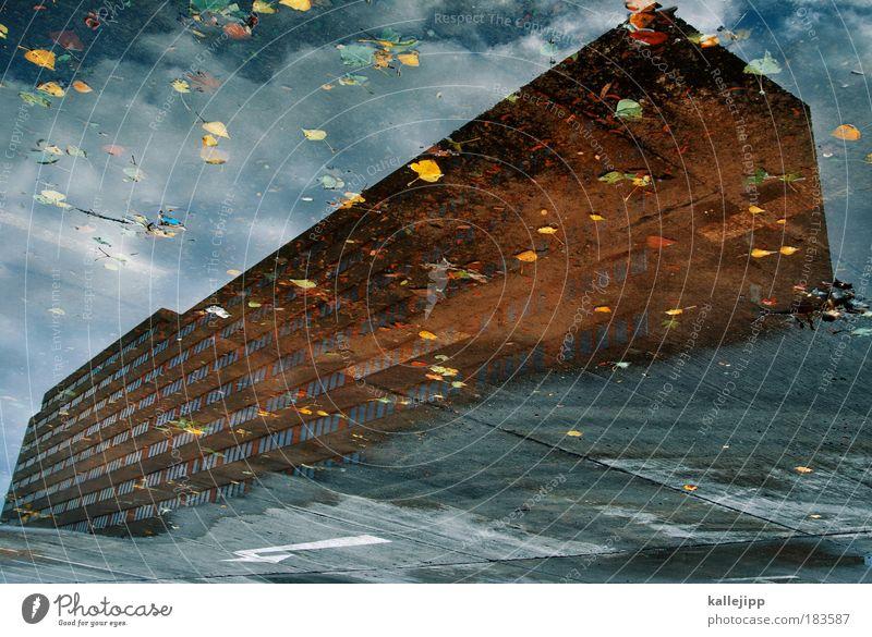 titanic Farbfoto Gedeckte Farben Tag Reflexion & Spiegelung Froschperspektive Stadt Haus Hochhaus Fenster Stein Beton Pfeil Pfütze Wasser Regen Herbst Blatt