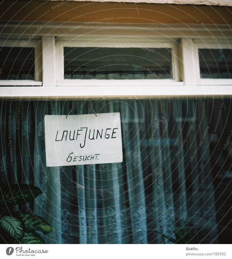 Auf dem Kiez Farbfoto Außenaufnahme Lomografie Tag Reflexion & Spiegelung Haus Dekoration & Verzierung Laufjunge Helfer Aushilfe Arbeit & Erwerbstätigkeit