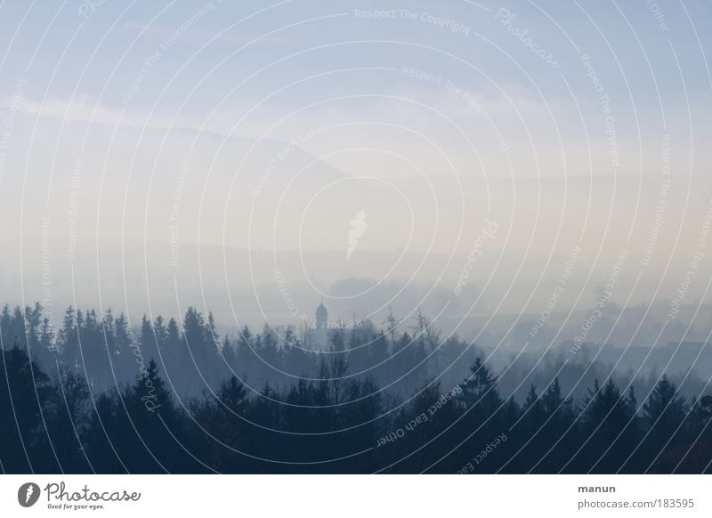 Nebeldecke Ferien & Urlaub & Reisen Tourismus Ferne Winterurlaub Umwelt Natur Landschaft Wolken Herbst Wetter Schönes Wetter Eis Frost Nadelwald Wald Hügel