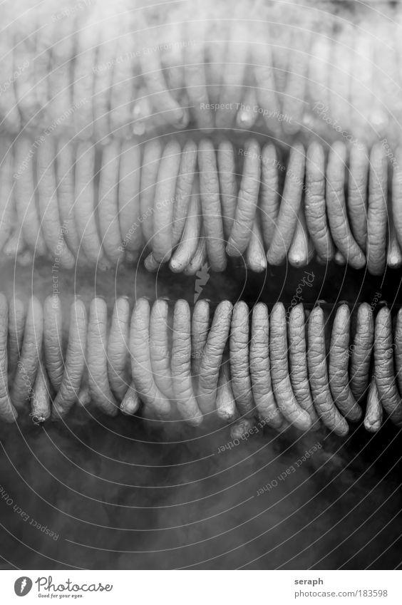 weiß schwarz Erholung Lebensmittel Nebel mehrere Fleisch Rauch Markt Wurstwaren Wasserdampf Geschmackssinn Verdunstung Marktstand geräuchert Wurstpelle