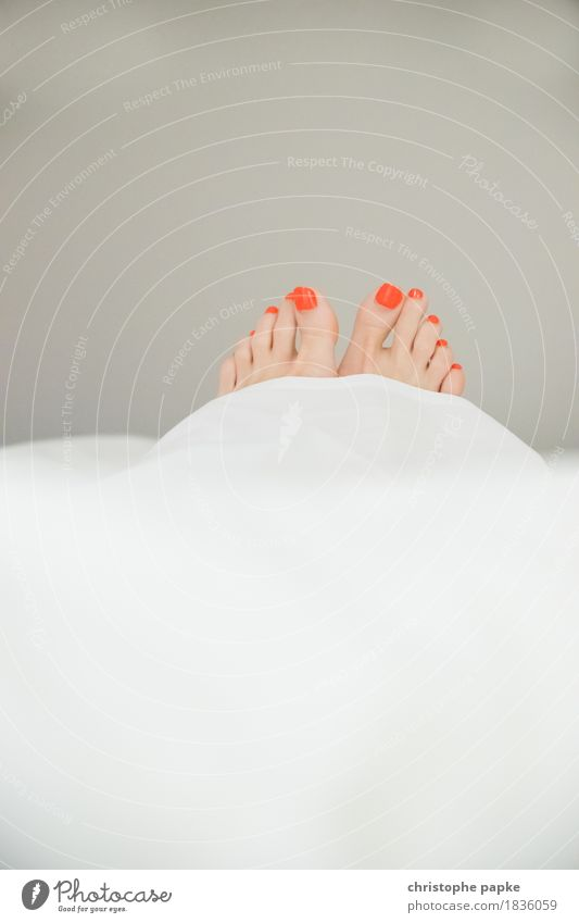 Peeping toes II Nagellack Wohlgefühl Erholung Häusliches Leben Wohnung Schlafzimmer feminin Frau Erwachsene Fuß Zehen Zufriedenheit liegen Bettdecke schön