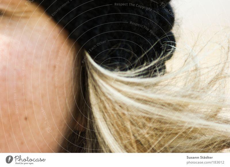 Novemberwind Frau Erwachsene Haut Kopf Haare & Frisuren Bekleidung blond langhaarig Locken schön Wollmütze schwarz Wind Haarsträhne Auge Hautfalten