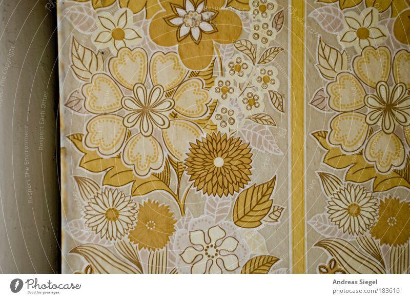 Blümchen alt Blume Haus gelb Wand Stil Mauer Linie Raum Wohnung Design Gebäude Lifestyle ästhetisch retro authentisch