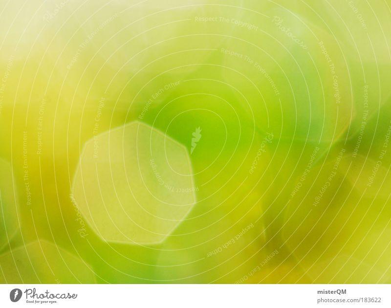 Somewhere in Between. Natur schön grün abstrakt ruhig Wiese Gras Hintergrundbild Zeit Kunst Reflexion & Spiegelung frisch modern ästhetisch Gegenlicht Ewigkeit