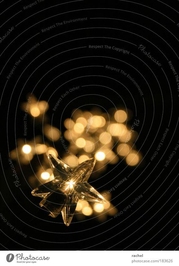 There is a light that shines... Weihnachten & Advent ruhig dunkel Stimmung Beleuchtung Feste & Feiern glänzend gold Hoffnung Stern (Symbol) Frieden Sehnsucht