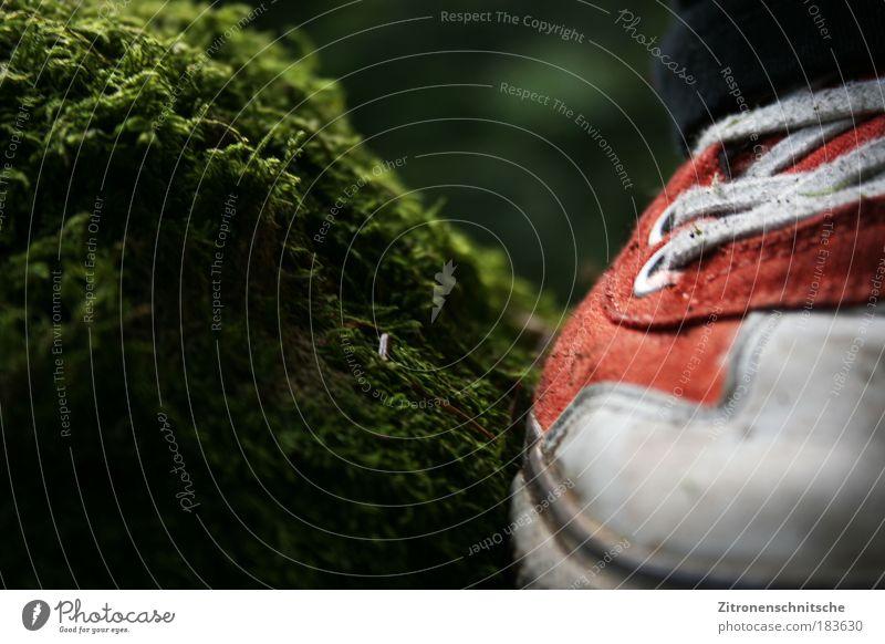 let my shoes lead me forward... Natur grün rot Erde Schuhe laufen stehen Moos Turnschuh
