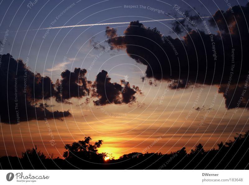 Sonnenuntergang in Brandenburg Himmel Natur blau schön Baum rot Sonne Sommer Wolken ruhig Erholung Freiheit Landschaft Umwelt Glück Stimmung
