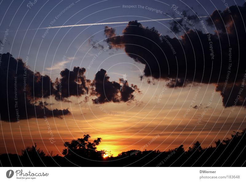 Sonnenuntergang in Brandenburg Himmel Natur blau schön Baum rot Sommer Wolken ruhig Erholung Freiheit Landschaft Umwelt Glück Stimmung