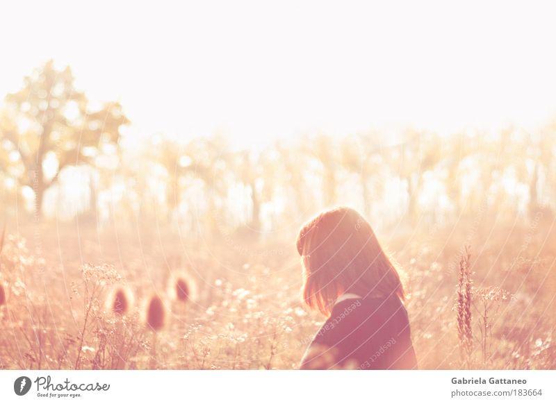 Wiesen Mensch Natur Herbst Wiese feminin Gefühle Glück Zufriedenheit hell Stimmung glänzend rosa gold frei Sträucher Warmherzigkeit