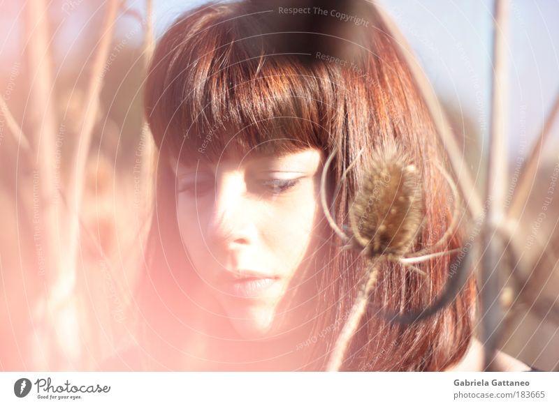 Dilara Mensch Natur Jugendliche schön ruhig feminin Gefühle Kopf Haare & Frisuren Denken hell warten natürlich beobachten rein brünett