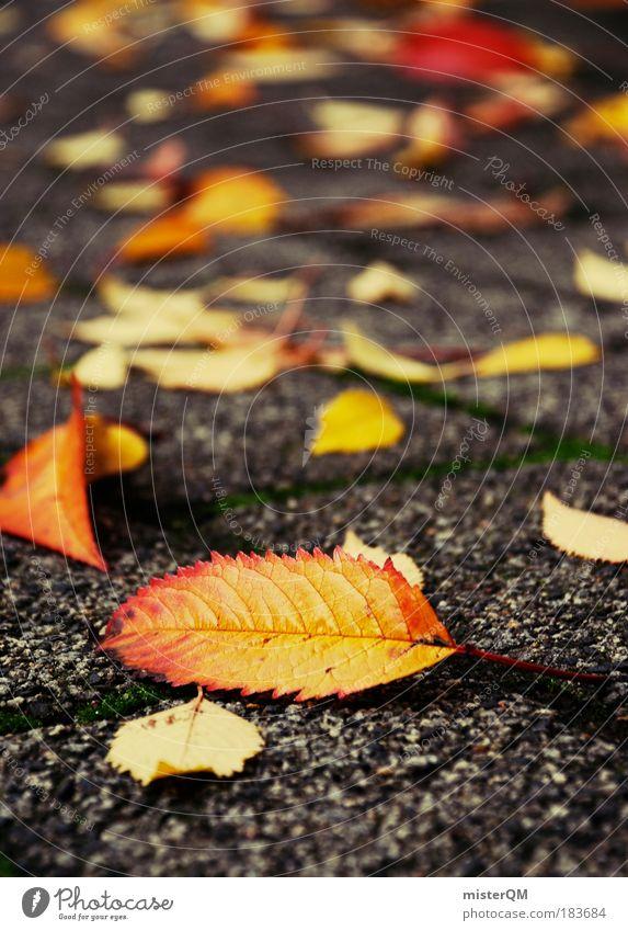 Herbstidylle. Natur rot Blatt gelb Park Zufriedenheit Perspektive ästhetisch Romantik Aussicht Spaziergang Boden liegen unten Bürgersteig