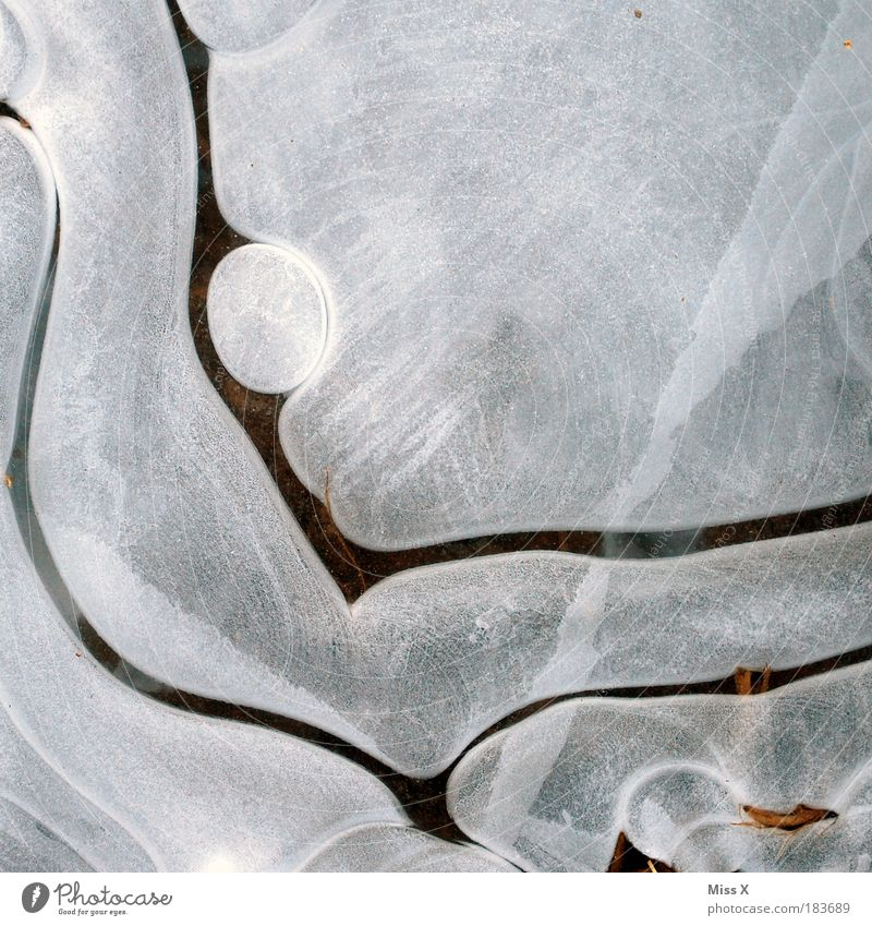 Lavalampe Wasser weiß Winter kalt Schnee Traurigkeit See Eis Lampe dreckig glänzend Wetter Umwelt Wassertropfen nass