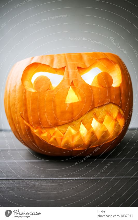 Kürbiskopf Kürbiszeit gruselig Wut böse Tradition Halloween geschnitzt Grimasse Gebiss bedrohlich orange Kreativität Idee dunkel Herbst Angst erschrecken