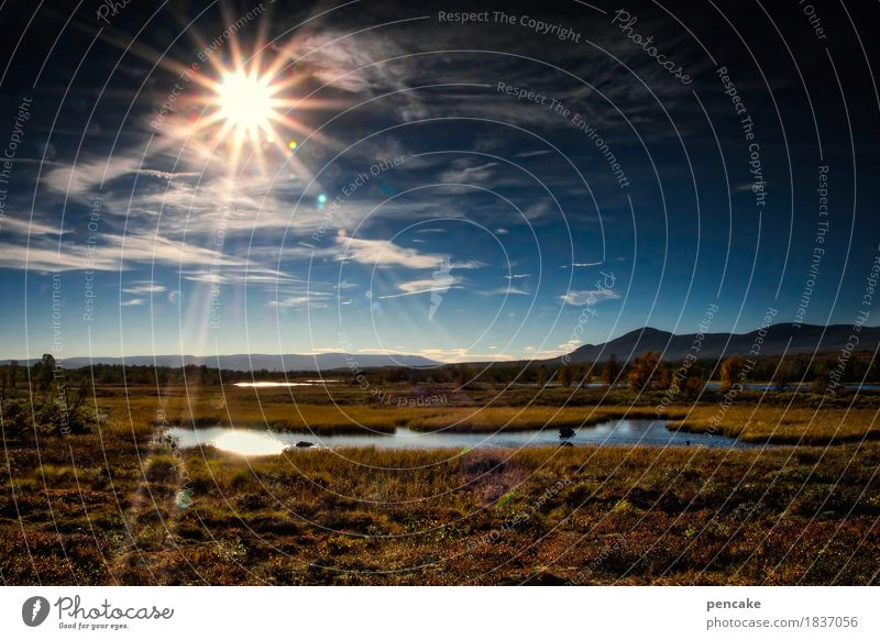 lichtleiter Natur Landschaft Einsamkeit Berge u. Gebirge Herbst außergewöhnlich See Stimmung wandern fantastisch Schönes Wetter Stern Nationalpark Skandinavien