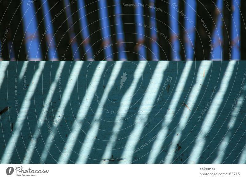 streifenblau blau ruhig Farbe oben Holz Linie Zufriedenheit hell frisch Fröhlichkeit Ordnung ästhetisch nah authentisch einfach Streifen