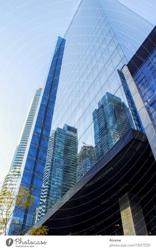 Symbole der Macht I blau Stadt Fenster Business Fassade glänzend Wachstum modern Glas Hochhaus ästhetisch Erfolg hoch Beton Unendlichkeit