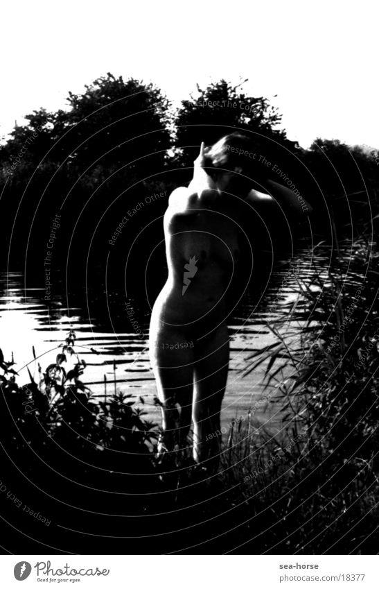Kontrast 2 Mensch Wasser feminin Akt Licht & Schatten