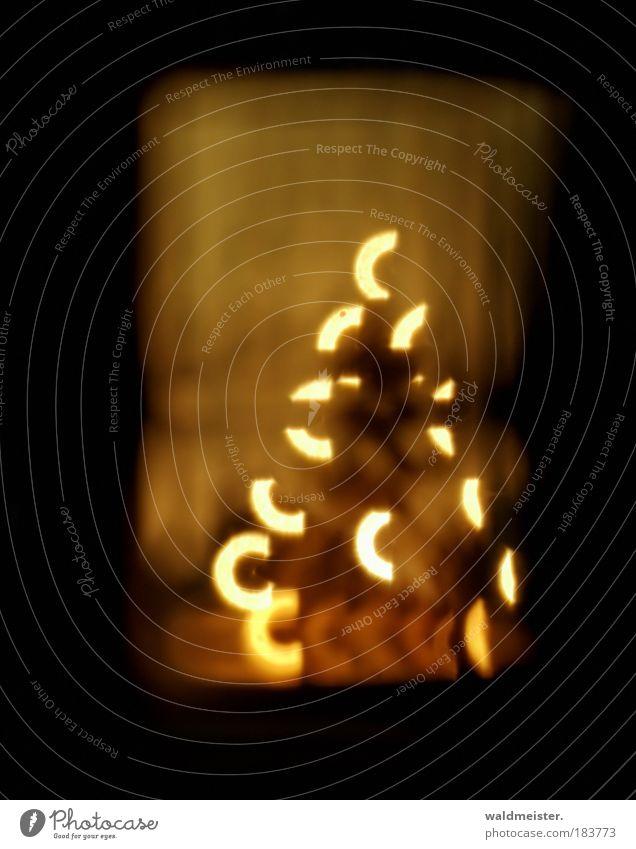 Weihnachtsfoto Weihnachten & Advent Erholung ruhig braun Textfreiraum gold Kindheit Glaube Frieden Tradition harmonisch Vorfreude Freude Geborgenheit