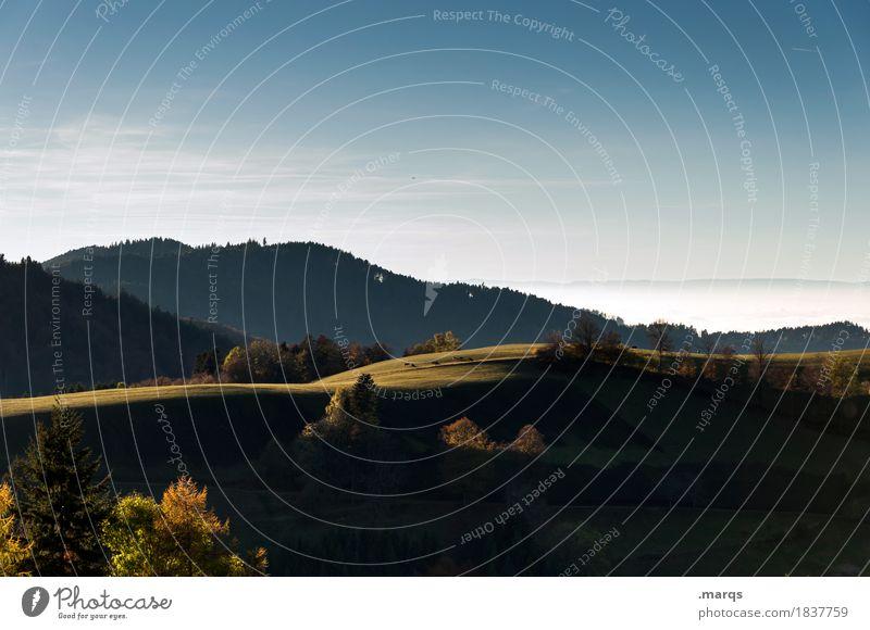 Schattig Ausflug Natur Landschaft Wolkenloser Himmel Sommer Herbst Schönes Wetter Wiese Wald Hügel Schwarzwald Erholung schön Stimmung Farbfoto Außenaufnahme