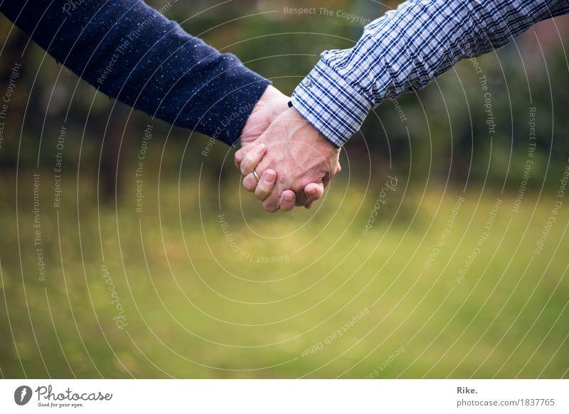 Gemeinsam. Mensch Frau Erwachsene Mann Eltern Familie & Verwandtschaft Freundschaft Paar Partner Leben Hand 2 Gefühle Vertrauen Sicherheit Geborgenheit