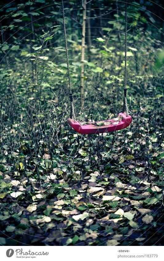 Vergessene Kindheit Farbfoto Außenaufnahme Menschenleer Tag Wald schaukeln grün rot Sehnsucht verlieren Schaukel Blatt vergessen Erinnerung erinnern
