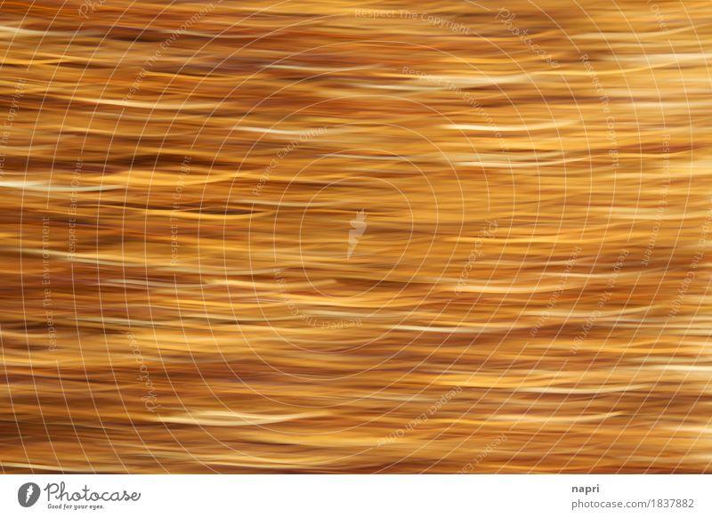 Im Lamettarausch I Party Inspiration Weihnachten & Advent gold Rausch Dekoration & Verzierung Hintergrundbild Feste & Feiern Unschärfe sanft abstrakt Linie