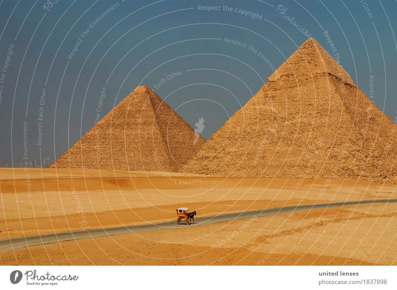 DR# altmodisch Altstadt Freizeit & Hobby Tourismus Ägypten Pyramiden Pyramiden von Gizeh Pferdekutsche 2 historisch Historische Bauten Sehenswürdigkeit
