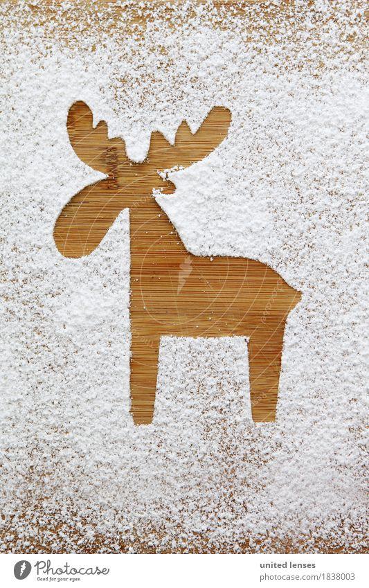 AKCGDR# Schneespur V Kunst Kunstwerk ästhetisch Rentier weiß Mehl Puderzucker Weihnachten & Advent Postkarte Strukturen & Formen Farbfoto Gedeckte Farben