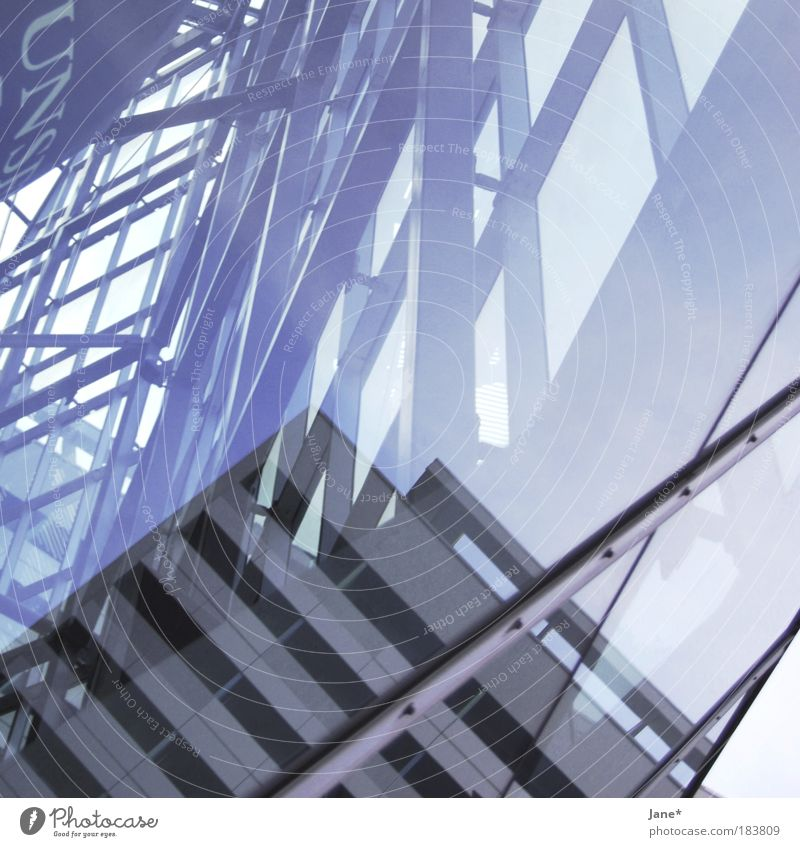 bestätigt am 11. Januar 2008 Farbfoto Außenaufnahme Experiment Muster Strukturen & Formen Menschenleer Textfreiraum oben Reflexion & Spiegelung Herbst Dresden
