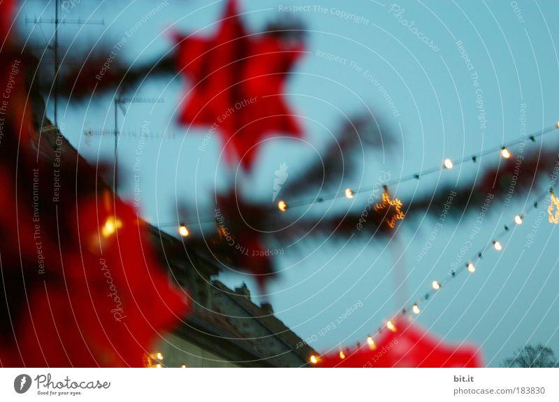 WEIHNACHTSMARKT... blau Weihnachten & Advent rot hell Feste & Feiern glänzend Stern Markt leuchten Stern (Symbol) Dekoration & Verzierung Show Kultur Kitsch Weihnachtsbaum Veranstaltung