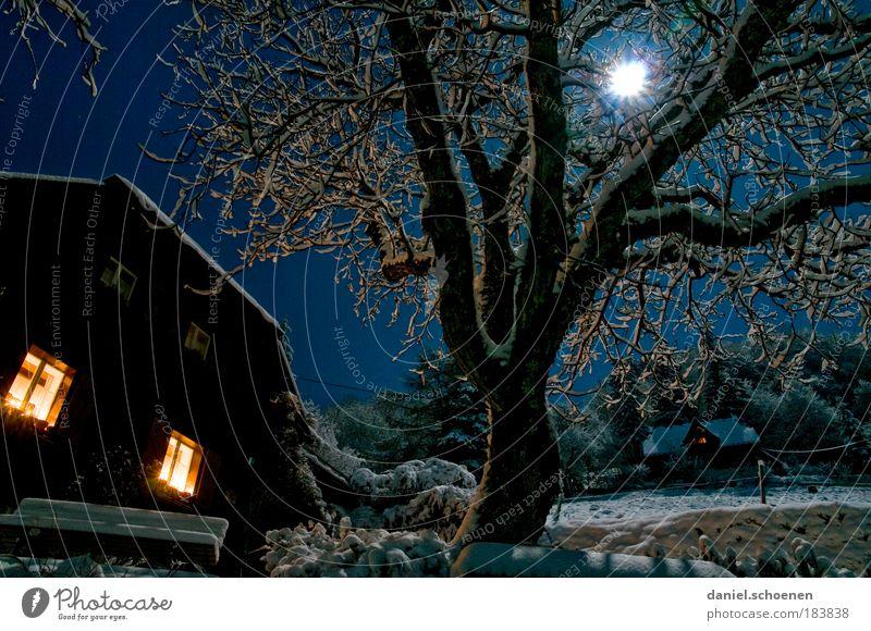 Vollmond Nacht Licht Weitwinkel Freizeit & Hobby Ferien & Urlaub & Reisen Nachthimmel Stern Mond Winter Hütte Fenster blau Energie Geborgenheit Baum Himmel