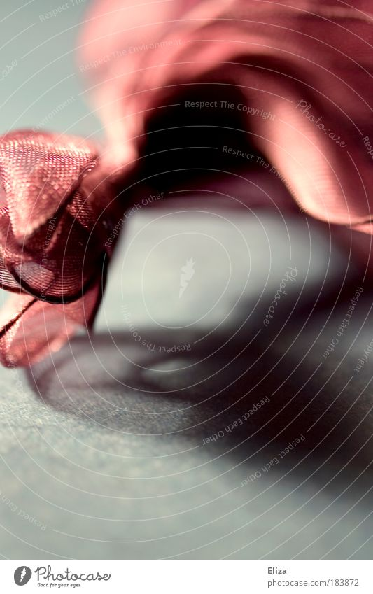 Kräuselig blau Stoff rosa ästhetisch Schatten Schleife Valentinstag Geschenkband Satin