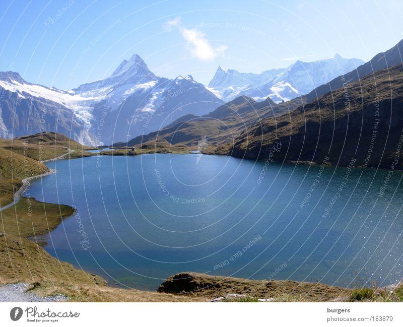 Bachalpsee Natur Wasser Himmel weiß blau Ferien & Urlaub & Reisen ruhig Wolken Erholung Herbst Gras Berge u. Gebirge Wege & Pfade See Landschaft hell