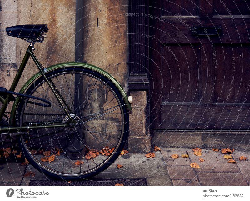 Green Donkey Lifestyle Freizeit & Hobby Häusliches Leben Haus Fahrrad Umwelt Herbst Gebäude Tür Verkehr Verkehrsmittel braun grün Gefühle Stimmung Gelassenheit