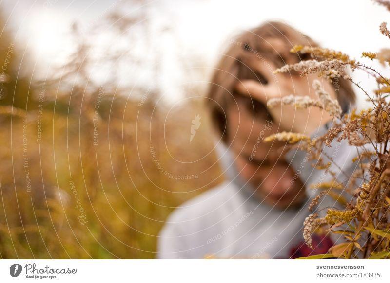 Im Felde Mensch Natur Jugendliche Pflanze gelb Gefühle Umwelt träumen Traurigkeit Stimmung Denken Erwachsene braun Angst maskulin