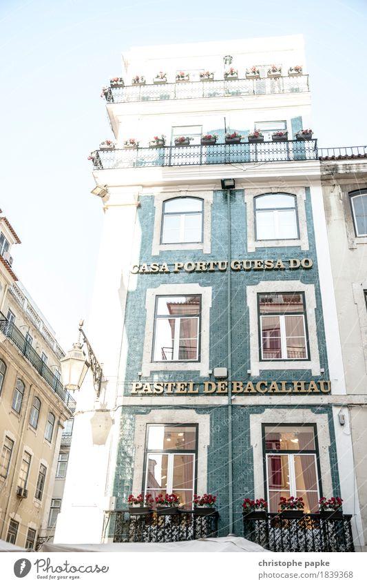 Casa portuguesa Ferien & Urlaub & Reisen Stadt Sommer schön Sonne Haus Fenster Architektur Gebäude Fassade hell historisch Bauwerk Hauptstadt Sommerurlaub