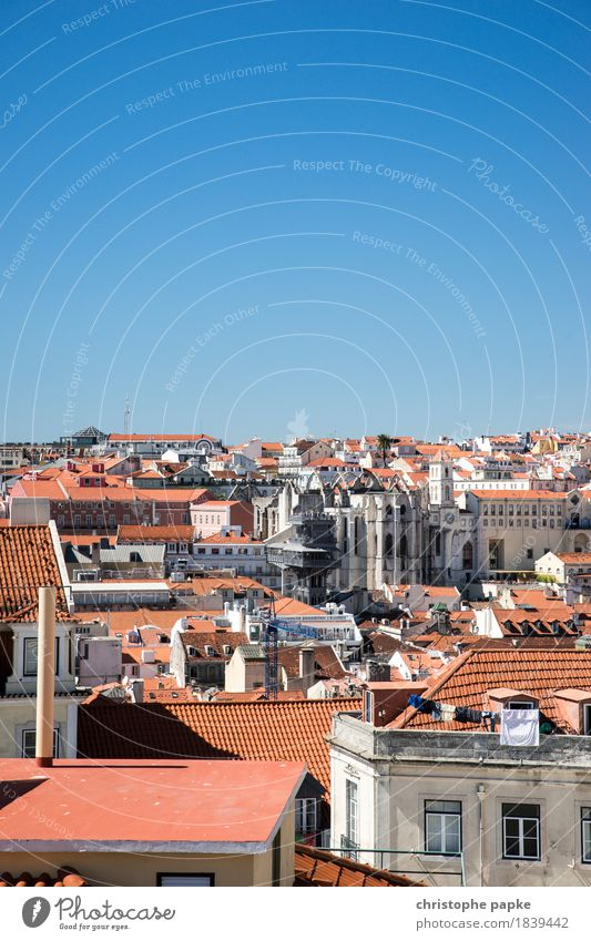 Dächermeer von Lissabon Ferien & Urlaub & Reisen alt Sommer Stadt schön Sonne Ferne Gebäude Stein Schönes Wetter historisch Dach Skyline Hauptstadt Sommerurlaub