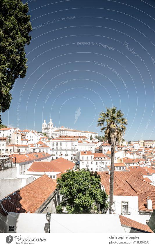 Oh wie schön ist Lissabon Ferien & Urlaub & Reisen Pflanze Sommer Stadt Sonne Baum Haus Freiheit Tourismus hell Ausflug Europa Schönes Wetter historisch Skyline