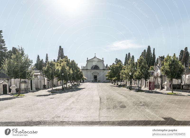 Cemitério dos Prazeres Ferien & Urlaub & Reisen Ausflug Sightseeing Städtereise Sommer Sommerurlaub Schönes Wetter Wärme Lissabon Portugal Stadt Stadtrand