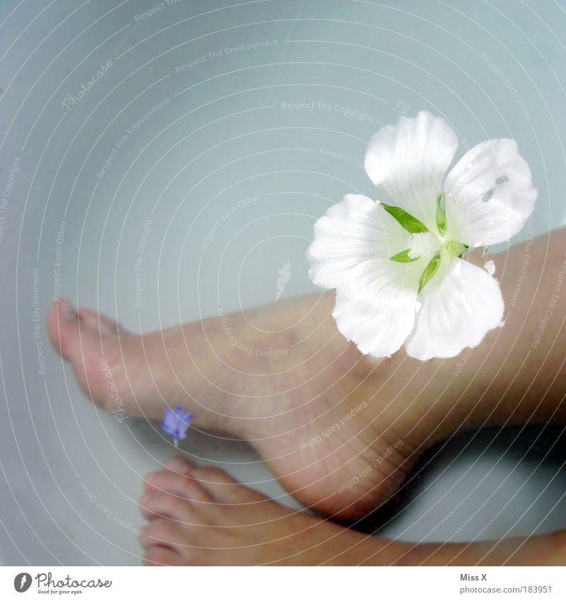 Badezusatz Mensch schön Pflanze ruhig Erholung Wärme Blüte Beine Fuß Gesundheit Schwimmen & Baden Haut nass Farbfoto Sauberkeit
