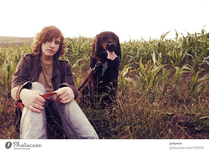 Bruder mit Hund Mensch Natur Jugendliche Sommer Mann Tier Umwelt Porträt Hund Gefühle Freundschaft Feld Zusammensein sitzen Ausflug