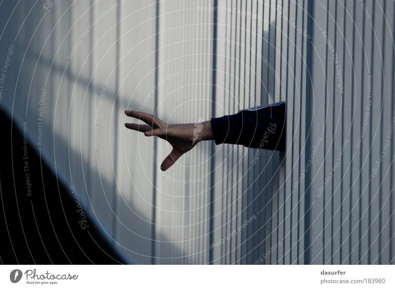 Catch me if you can Mensch blau Hand weiß Einsamkeit Kraft Angst Arme gefährlich Finger Brücke trist gruselig Wut Todesangst Pullover