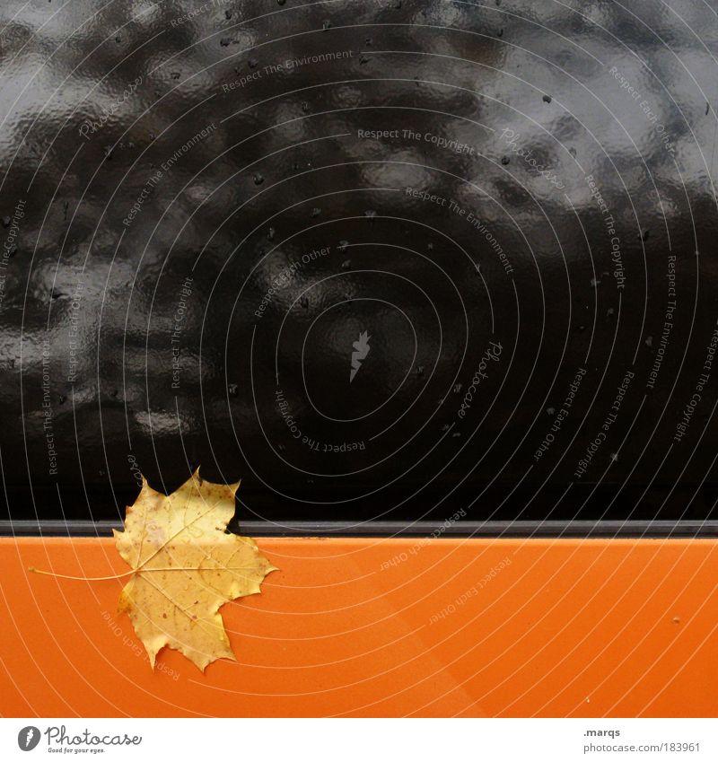 Sticky Pflanze Blatt schwarz Einsamkeit kalt Herbst Stil orange Metall nass trist einfach einzigartig Zeichen Grafik u. Illustration