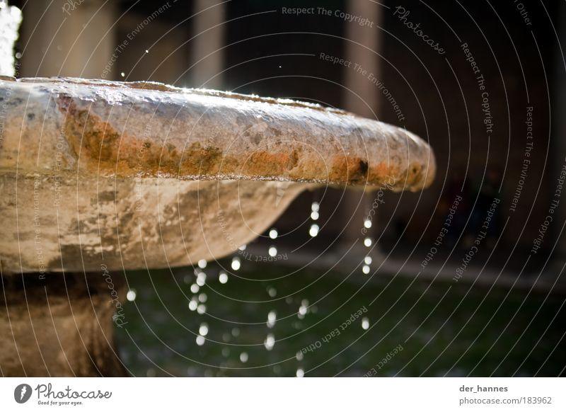 tocktocktock Wasser Stein Kunst Wassertropfen nass Tropfen fallen Brunnen Skulptur Museum tropfend