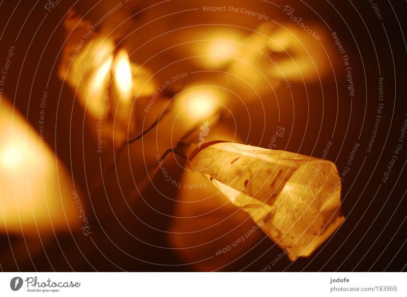lichterkette Weihnachten & Advent Winter Lampe Nacht Wärme hell Zusammensein Papier Sicherheit Innenaufnahme Farbfoto Romantik Kitsch Dekoration & Verzierung