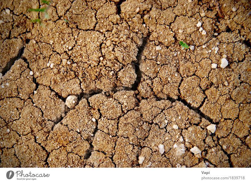 Trockener gelber Boden in der Wüste Sommer Umwelt Natur Erde Sand Klima Wetter Dürre Stein dreckig heiß natürlich braun Desaster trocknen Land Konsistenz