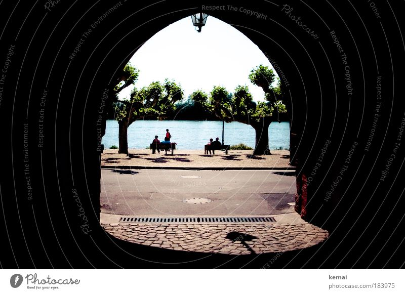 Tor zum Rhein Farbfoto Außenaufnahme Tag Licht Schatten Kontrast Totale 4 Mensch Menschengruppe Schönes Wetter Baum Flussufer Wasser Kleinstadt Erholung sitzen